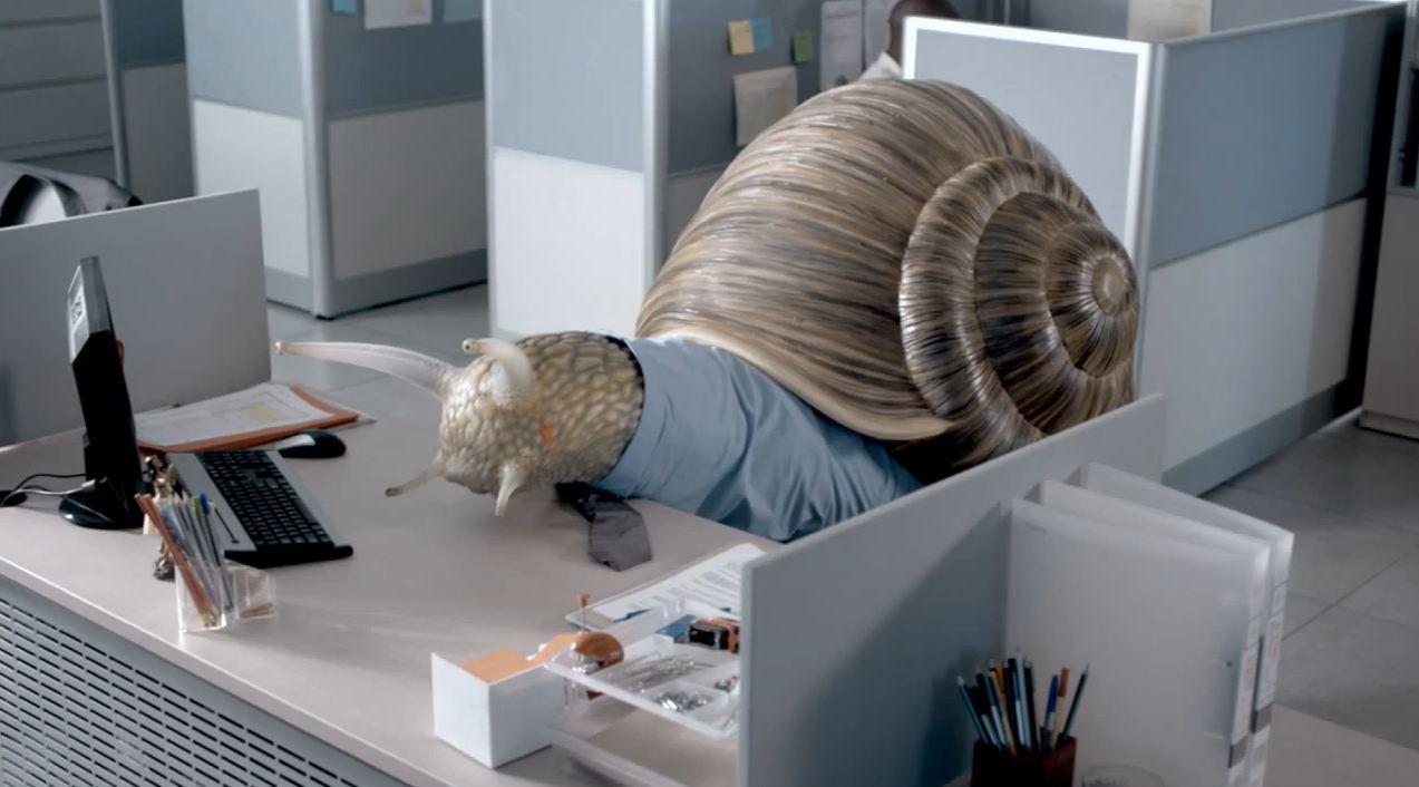 Yogi Sip Snail