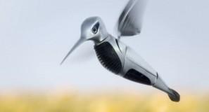audiHummingbird