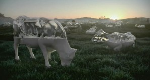 Glass Cows: Spot 2
