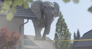 Kabel Deutschland Elephant